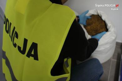 Rybniccy policjanci zlikwidowali nielegalną fabrykę tytoniu