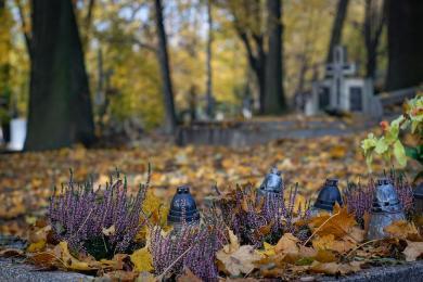 Zmiana organizacji ruchu w rejonie cmentarzy