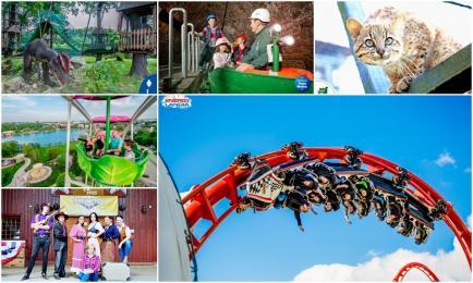10 najciekawszych miejsc, które warto odwiedzić z dziećmi!