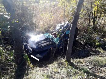 Rybnik: Pijany kierowca uderzył w drzewo