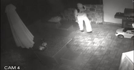 Złodziej z Rybnika poszukiwany! Włamał się do domu, ukradł pieniądze i zegarki [FOTO]