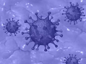 Aktualne informacje dot. sytuacji, związanej zzagrożeniem koronawirusem w Rybniku